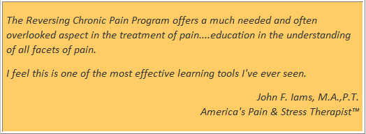 Reversing chronic pain 10 skills from the reversing chronic pain online self learning program and provides valuable tips for how to put what you are learning into practice fandeluxe Choice Image